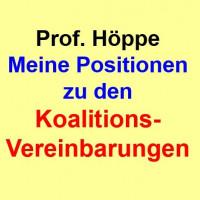 Prof. Höppe, Meine Positionen zu den Koalitionsvereinbarungen